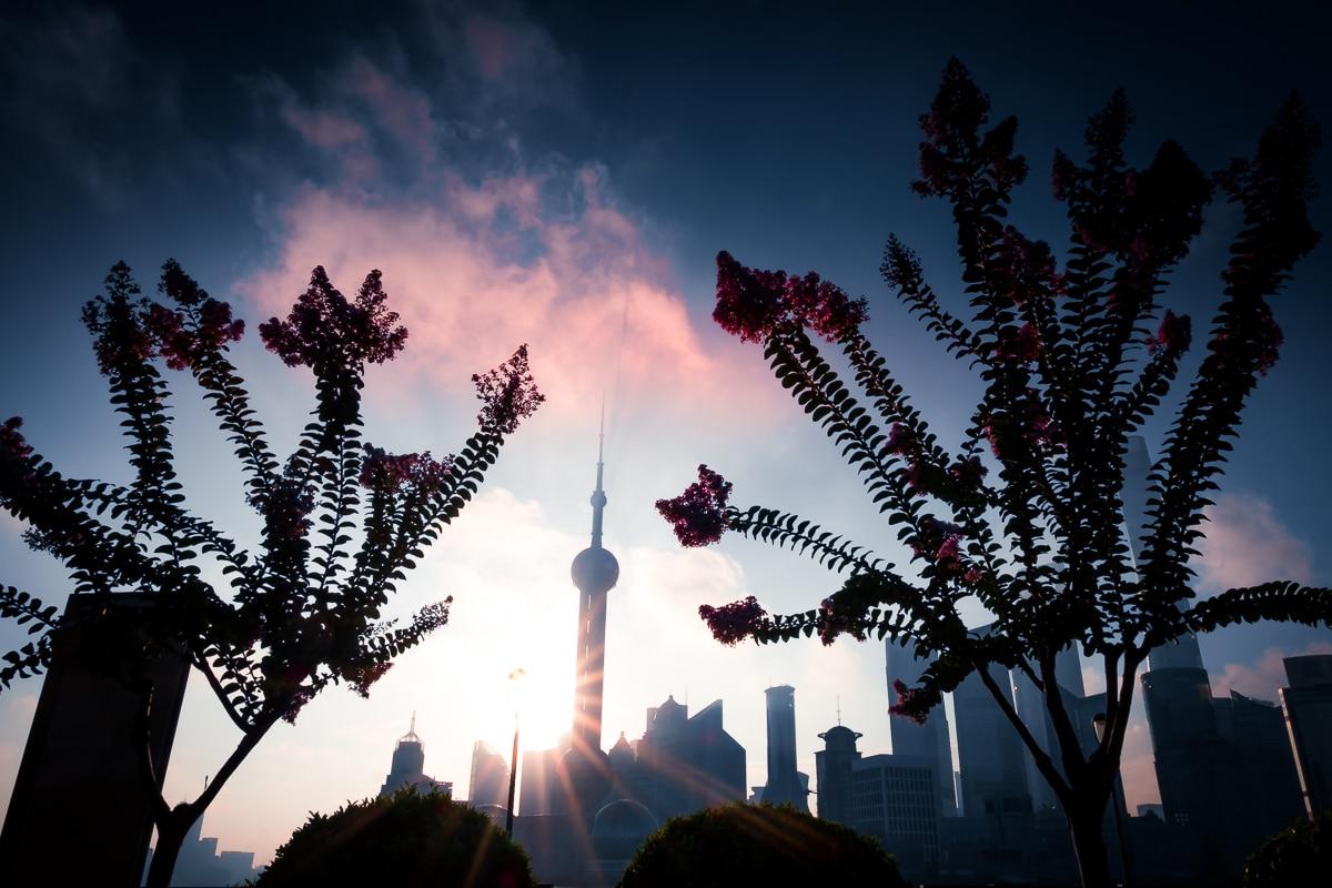 Shanghai Pudong Sunrise 16